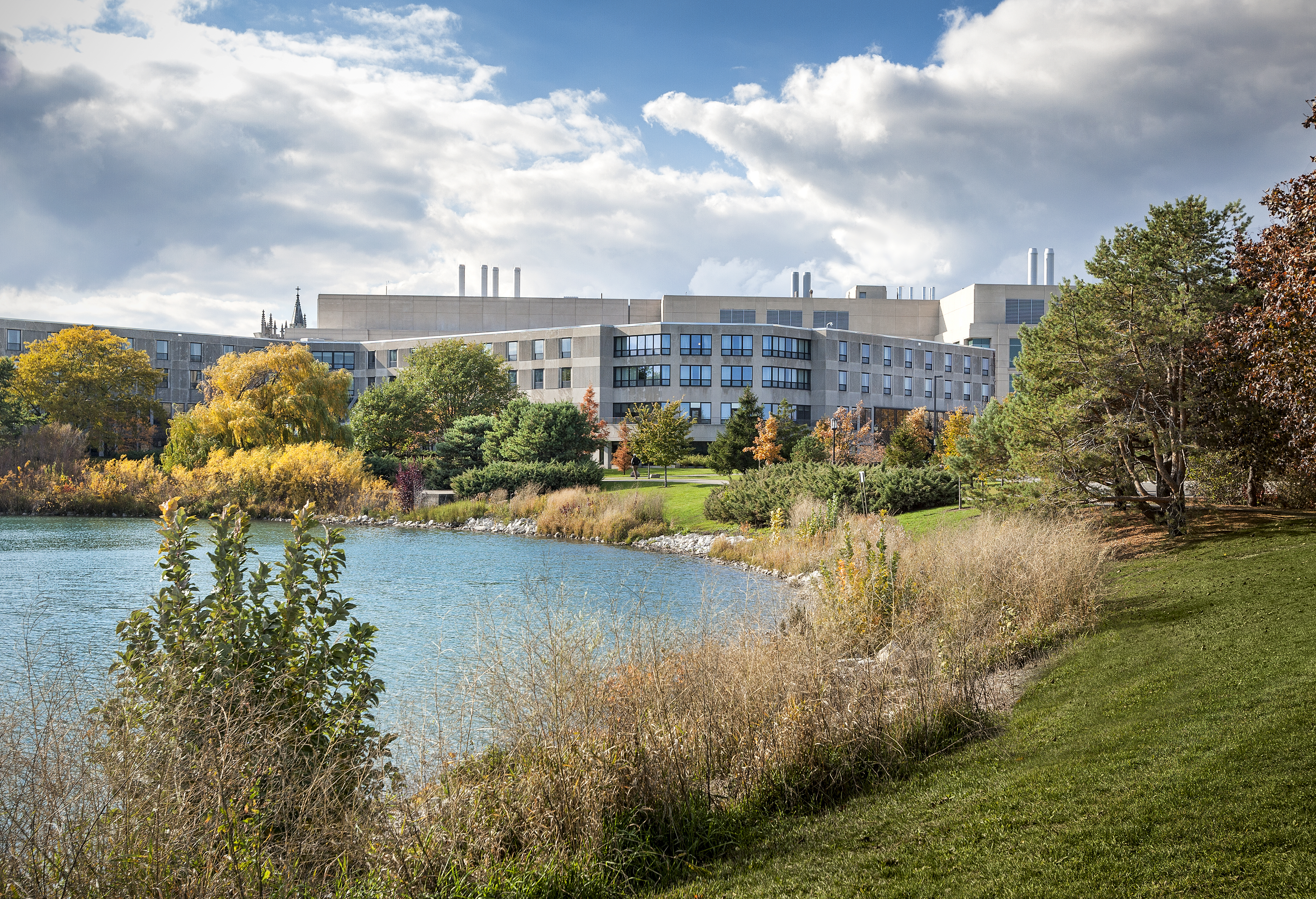 Allen Center landscapes by Mike Crews.